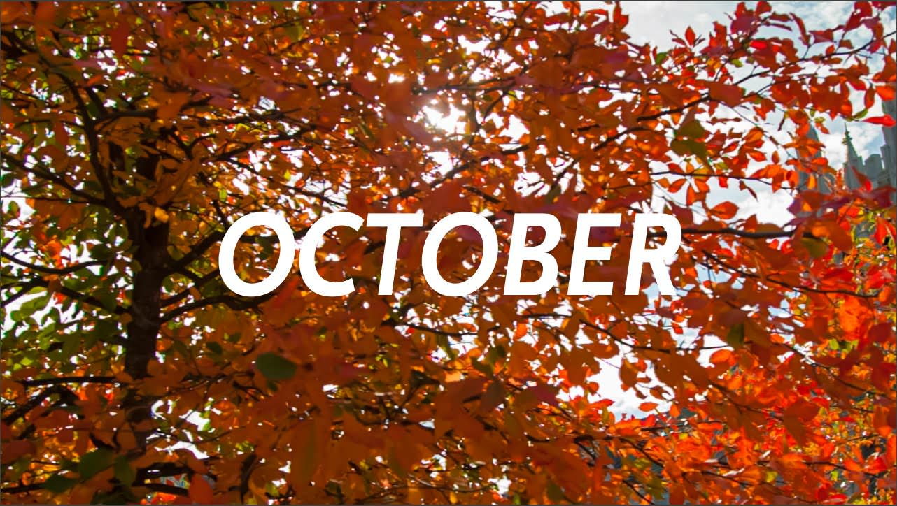 5 Reasons why October is the Best Month